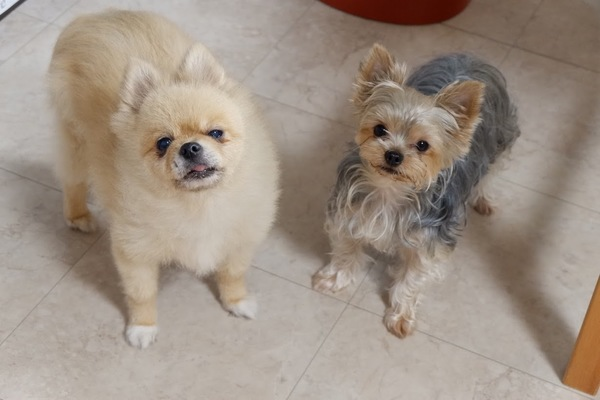 タクちゃん&ミユちゃん