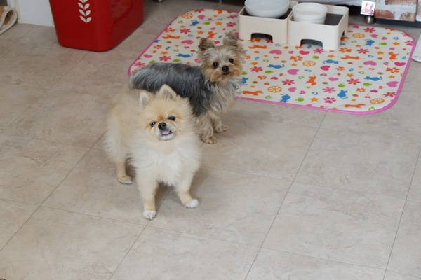 タクちゃん&ミユちゃん パート2